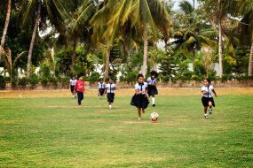 Football-Field-02