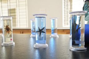 Science-Lab-04